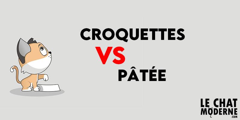 Alimentation pour chats : Croquette ou Pâtée ?