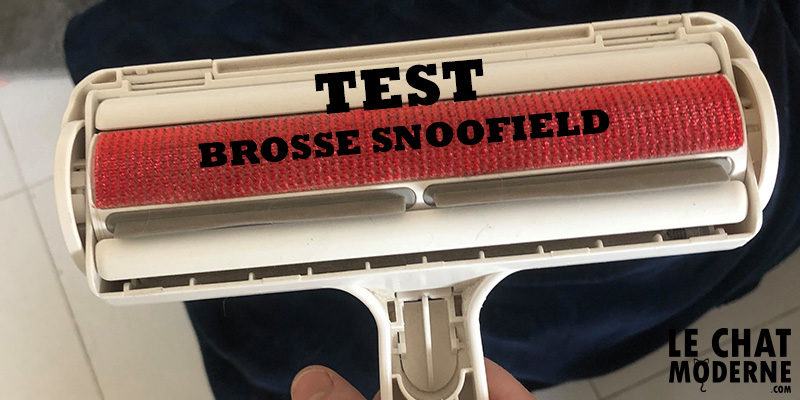 TEST : La Brosse Snoofield anti-poils de chats