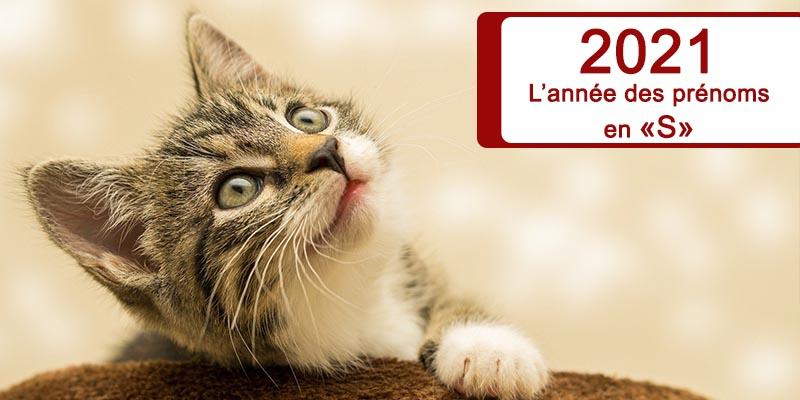 2021: Les prénoms pour chats en «S»